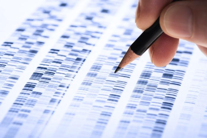 Analysis Expertise Empreintes Genetiques Test Paternite 03